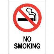 No Smoking safety sign - No Smoking 005